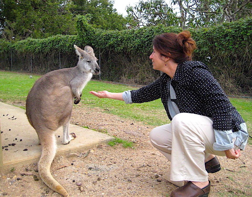 Small group tours australia